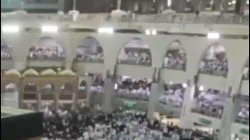 Saut de l'ange - Un Muzz français se suicide à la Mecque