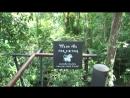 Черныши в Тайланде 7 Hanuman World Phuket
