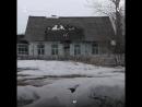 В трех деревнях Красноярского края на минувших выборах президента России Путин набрал 100% голосов. Мы съездили в одну из них -