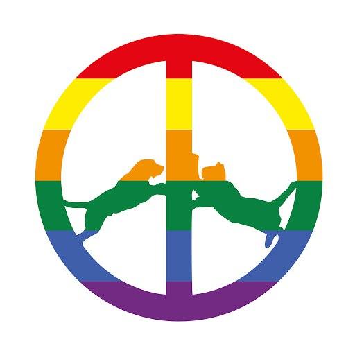 Hype Williams альбом Rainbow Edition