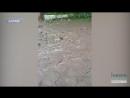 Будинки які плавають у болоті або Як працюють профільні департаменти у Харкові