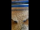 Премиум Пеллеты 6мм EnPlusA1