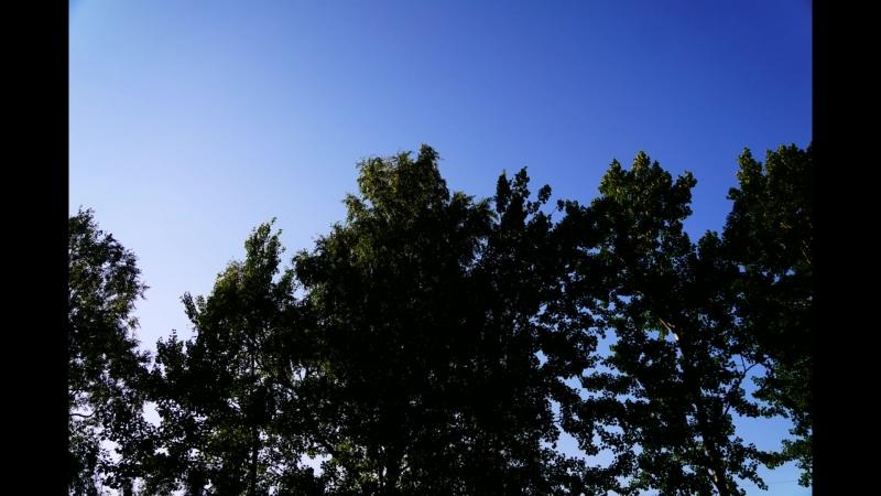 2017-08-06 Рыженино по Болшаку Новосокольники под Корочун ,Масленница и Там Где начинается твоя печаль