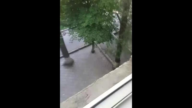 соревки в Алматы