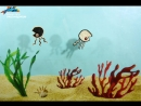 Света «Черно-белые медузки» | Мультурок в Крокус Сити Океанариуме