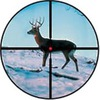 Arbalet-airgun: арбалет пневматика охота оружие