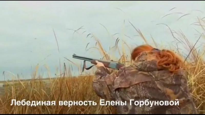 Е.Горбунова хладнокровно убивает лебедя, летевшего со своей парой и детёнышем.