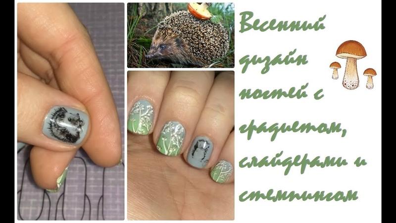Весенний дизайн ногтей Градиент Слайдер дизайн Стемпинг Ёжик в лесу