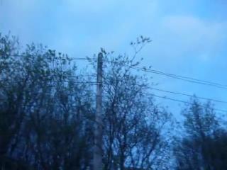 ул. Мурманская в г. Мурманске без электроснабжения после порыва ветра.