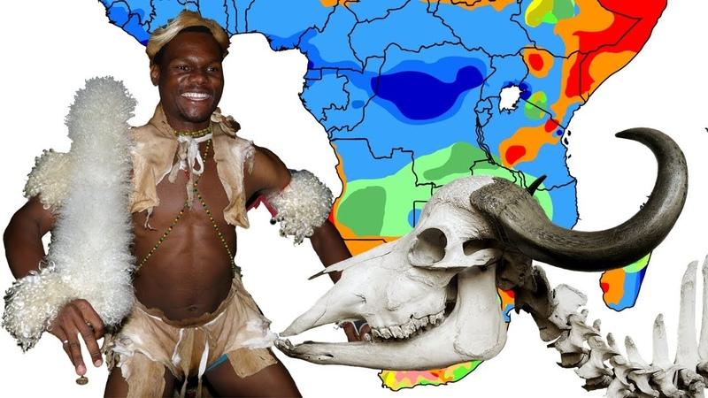 Развитие скотоводства и земледелия в Южной Африке. Переход от каменного к железному веку. История