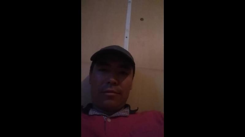 Arman Kazak - Live