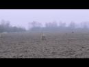 72 метра Любимые отрывки из фильма