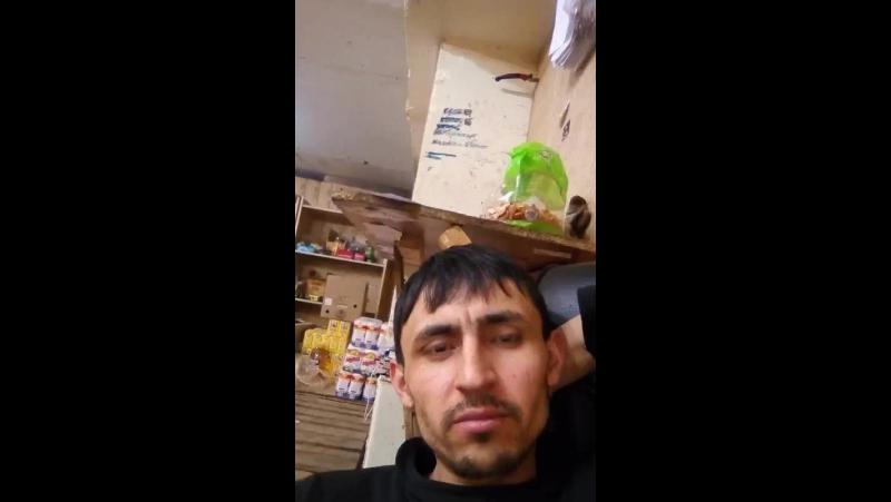 Amir Parviz - Live