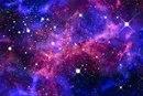 Виолетта Голосеева фото #28