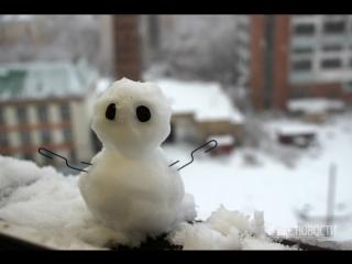 Омск замело крупными хлопьями снега