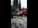Медведя вытягивает КамАЗ