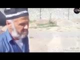 MUHOJIR BACHA  Беҳтарин суруди Гариби барои Гириб бачахои точик 2018.mp4