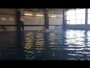 Показательные выступления Спортивной школы по водным видам спорта отделение синхронного плавания на торжественном открытии сорев