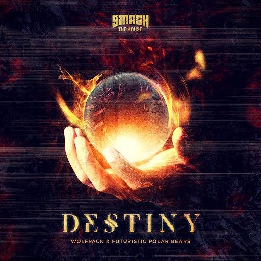 Futuristic Polar Bears альбом Destiny