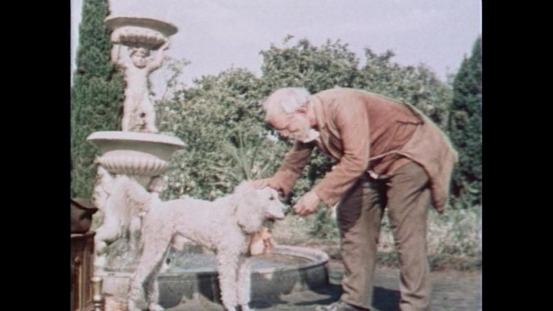 Белый пудель. Детский, семейный фильм о животных. 1956 г. СССР.