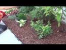 Как бороться с сорняками. Геотекстиль и декоративная мульча