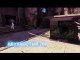 Destiny 2 TwoTailedFox