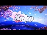 Intro By Sako