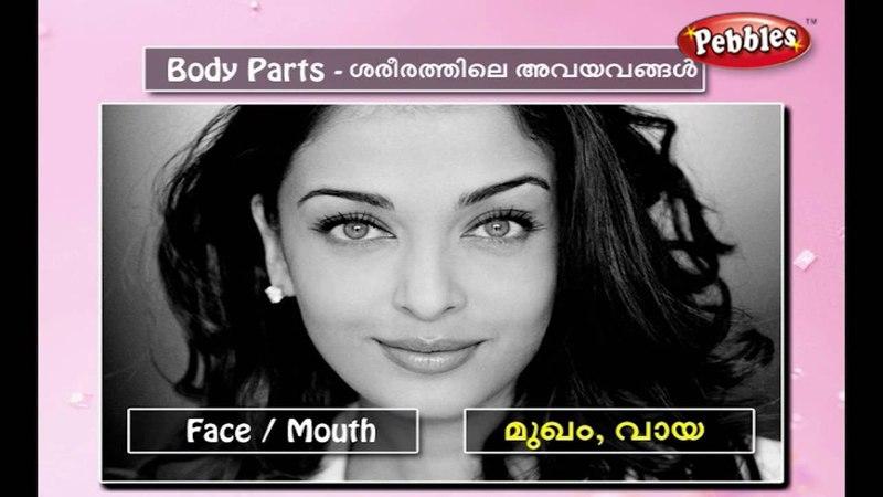 Speak Malayalam Through English | Spoken Malayalam Lesson - 41 | Body Parts
