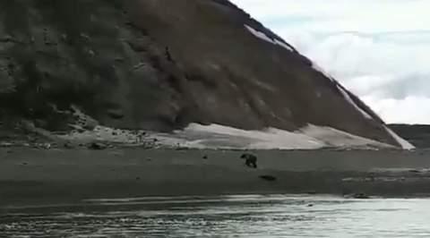 Беги, Серега!: очевидец снял на видео фатальную встречу рыбака с медведем