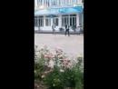 тесттан шыккан батырым