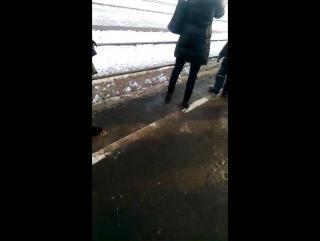 В Костроме встретили ретро-поезд