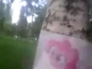 03.08.2013. 11 Сходка Омских Брони.