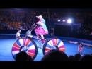 Старинный цирк Пилигрим