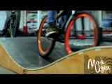 Открытие памп-трека — искусственной трассы для велосипедистов