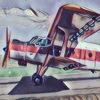 Аэроклуб СТАРИЦА  (Прыжки с парашютом)
