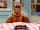 Alf Quote Season 2 Episode 14_Про тортик