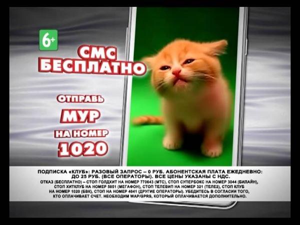MUR (6) 1020_MPEG.mpg