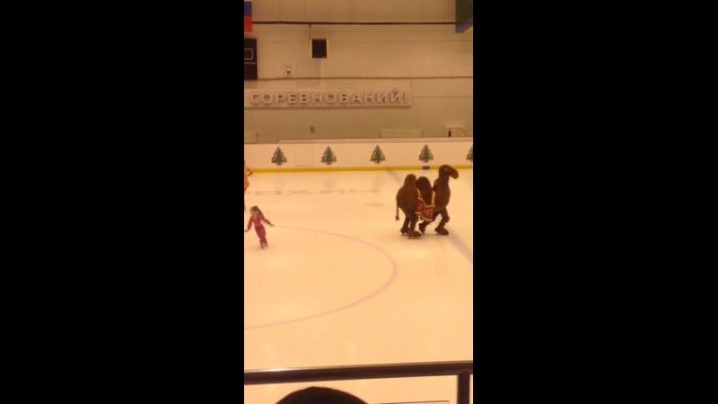 Изюмчик на коньках!