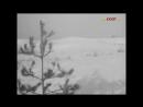 «Дикая собака Динго» (1962) - драма, реж. Юлий Карасик
