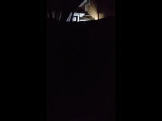 Ночные топоры