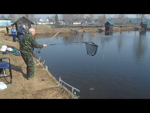 16.04.2018 на Форелевых водоёмах рыбхоза Гжелка