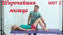 Разбор широчайшей мышцы спины. Кинезиология. Семинар по ммт.
