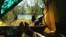 """Julia ruks on Instagram """"Guten Morgen ❤  hagenbach trees traveling camping pantheism germannature zelt tent wildcamping veggiedog guten..."""