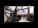ЭкоПарк в программе Стоп-кадр на ТНТ-Онего