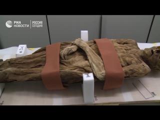 Найденная в Швейцарии мумия оказалась дальней родственницей Бориса Джонсона