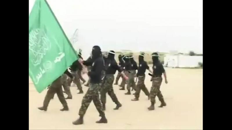 Хамас Палестинское Сопротивление