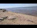 Белое море - полная вода ОНЕГА