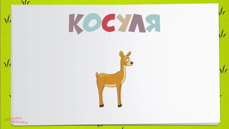 ЛЕСНЫЕ ЖИВОТНЫЕ! Учим животных для детей! Дикие животные - развивающие мультфиль