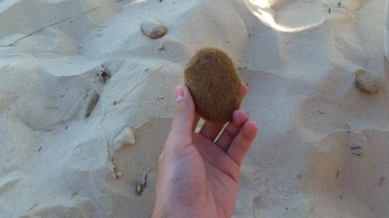 Тунисская картошка