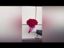 Шляпая коробка из 15 красных роз